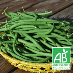 Haricots Verts 1 kg