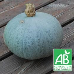 Potimarron Bleu 1.5 kg
