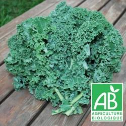 Chou Kale botte 300g