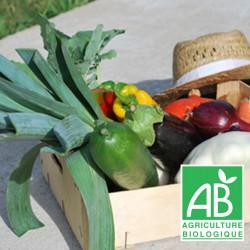 Panier MINI légumes bio