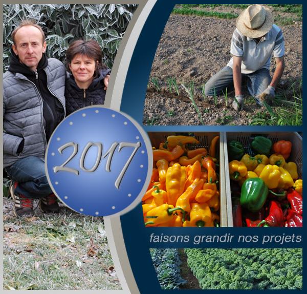 Bonne année 2017 - A Pic Légumes